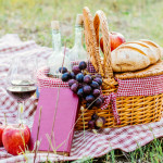 Gids voor de ultieme Rotterdamse picknick