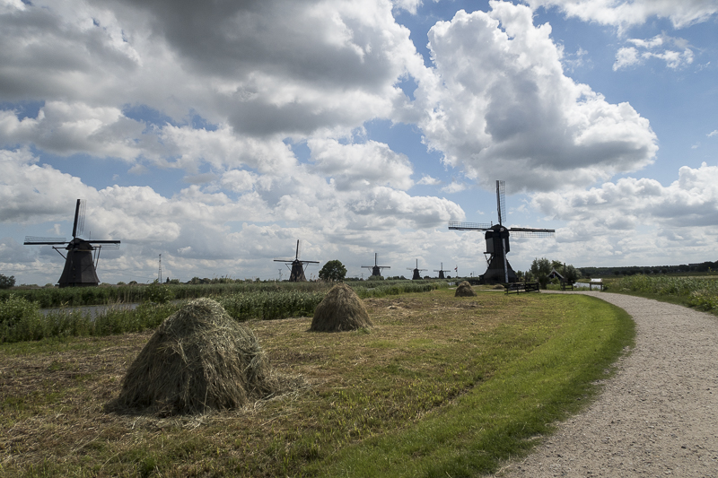 molendijk2
